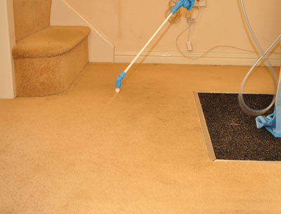 Carpet Cleaning Step 2